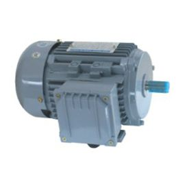 MSB3-Aluminum alloy three-phase AC induction motor