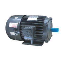 AEEF-VF Invertor Duty Motor Series