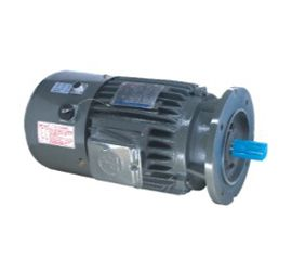 AEVF-VF Invertor Duty Motor Series