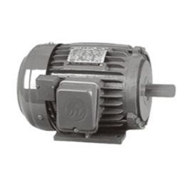 AC Induction Motor with DC Brake